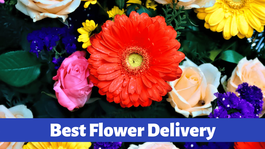 Best Flower Delivery Services in Edmonton